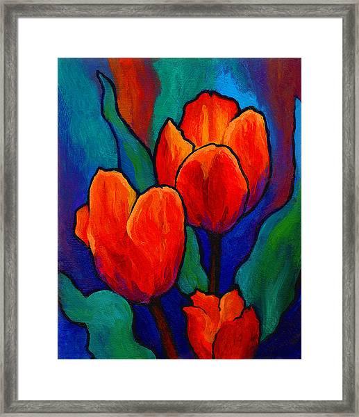 Tulip Trio Framed Print