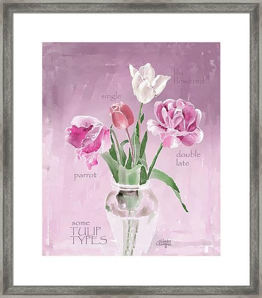 Tulip Types Framed Print