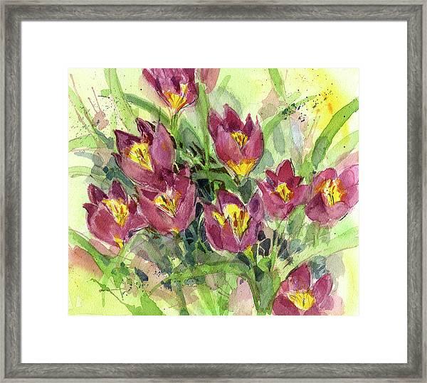 Tulipa Framed Print