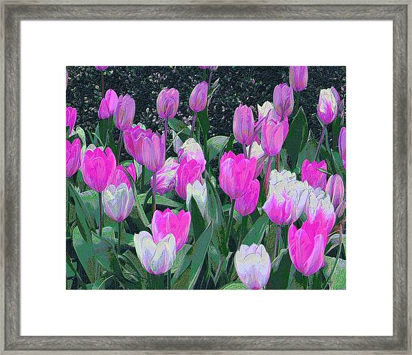 Framed Print featuring the digital art Tulips 327dp by Brian Gryphon