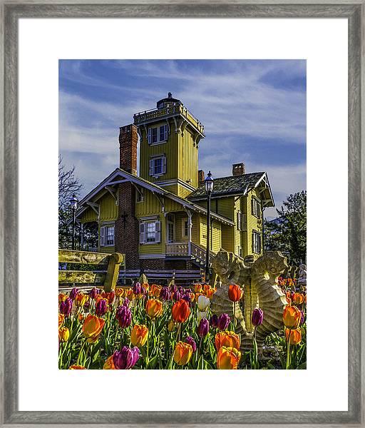 Tulips Af Hereford Light Framed Print