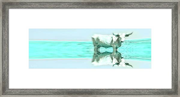Turquoise And Steer Framed Print