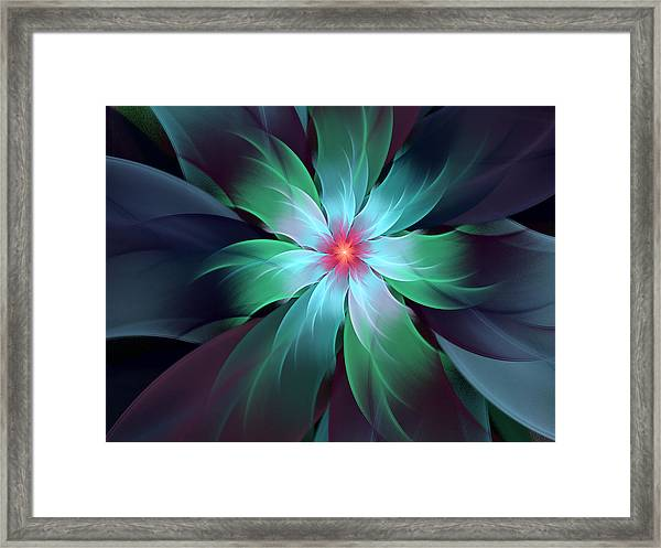 Turquoise Bloom Framed Print