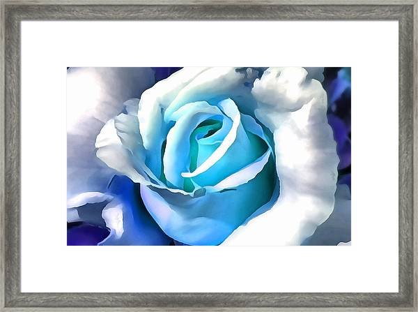 Turquoise Rose Framed Print