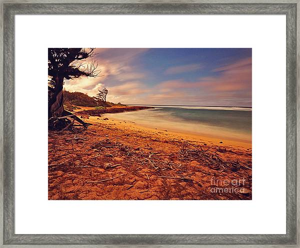 Turtle Bay Point  Framed Print
