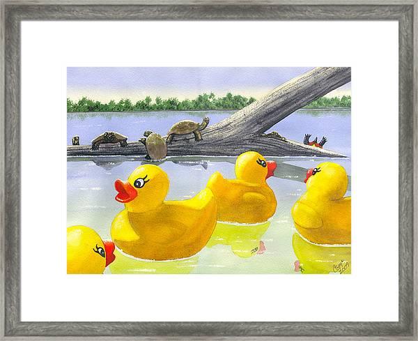 Turtle Log Framed Print