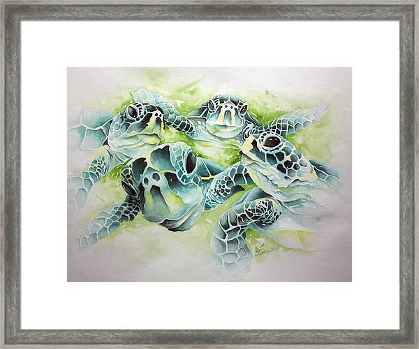 Turtle Soup Framed Print