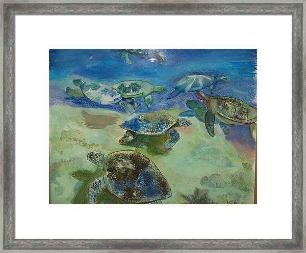 Turtles Framed Print by Aline Kala