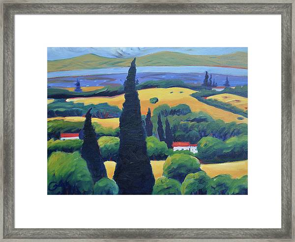 Tuscan Pines And South Bay Framed Print