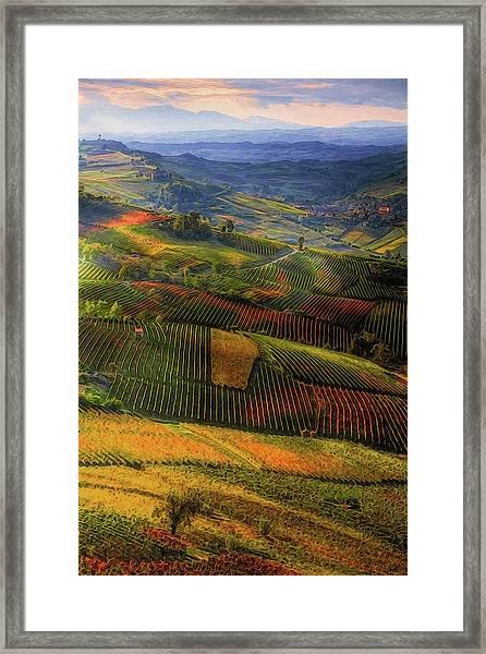 Tuscany, Italian Wineyards  Framed Print