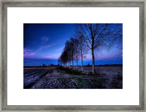 Twilight And Trees Framed Print