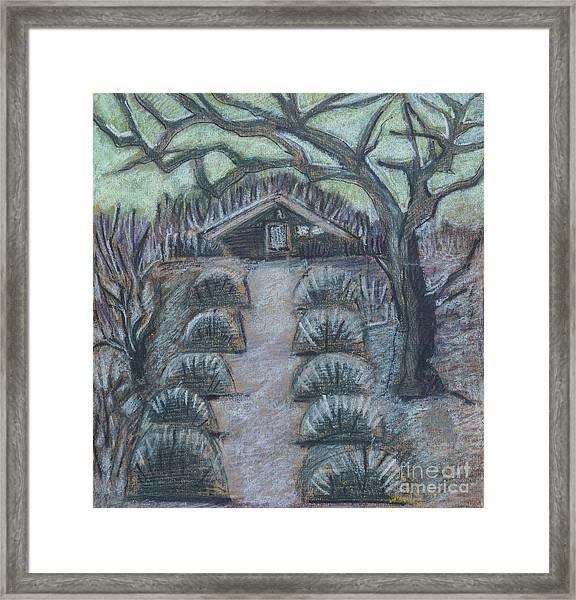 Twilight In Garden, Illustration Framed Print