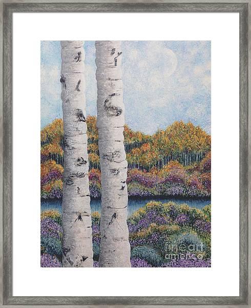 Twin Aspens Framed Print