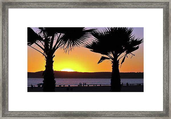 Twin Palms At Sunset Framed Print