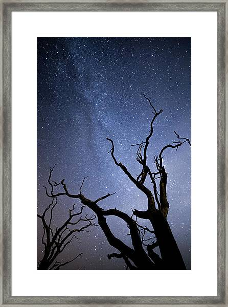 Twisted Spooky Trees And The Milky Way Stars Framed Print