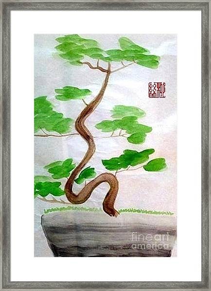 Twists And Turns Of Life Framed Print
