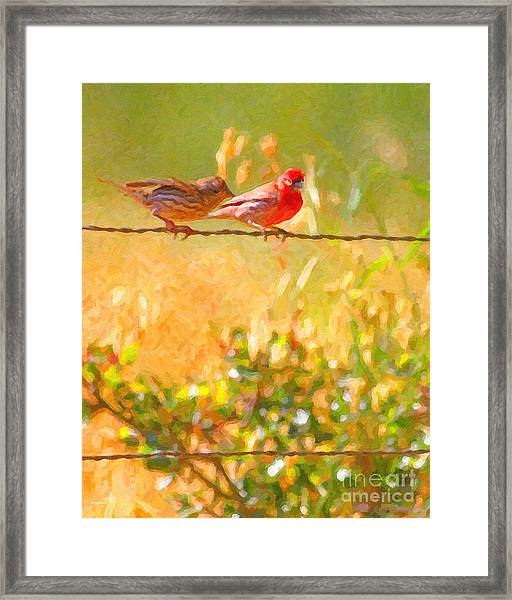 Framed Print featuring the photograph Two Birds On A Wire by Wingsdomain Art and Photography