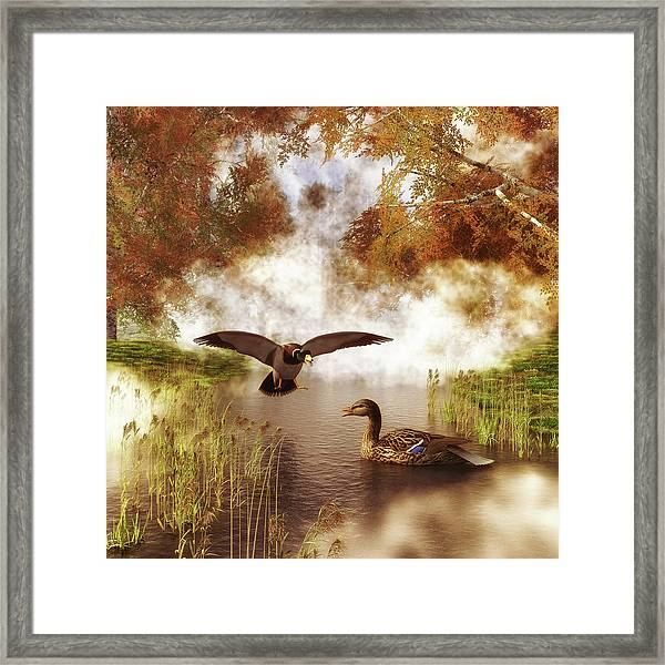 Framed Print featuring the painting Two Ducks In A Pond by Jan Keteleer