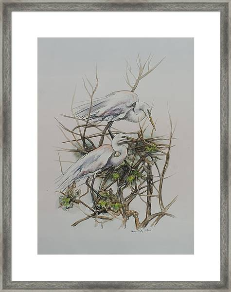 Two Egrets In A Tree Framed Print
