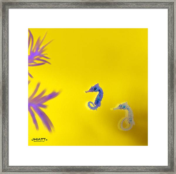 Two Fer  Framed Print