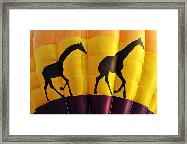 Two Giraffes Riding On A Hot Air Balloon Framed Print