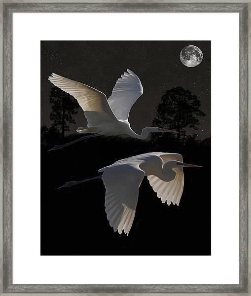 Framed Print featuring the mixed media Two Great Egrets In Flight by Eric Kempson