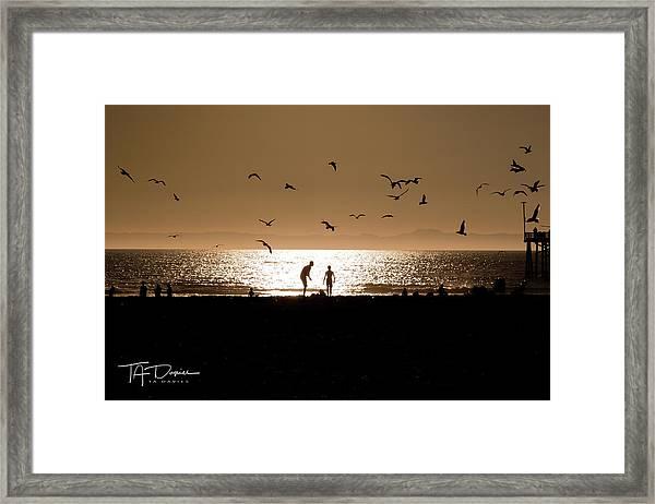 Two In Sun Framed Print