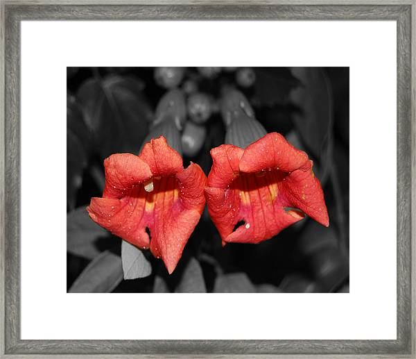 Two Of Hearts Framed Print