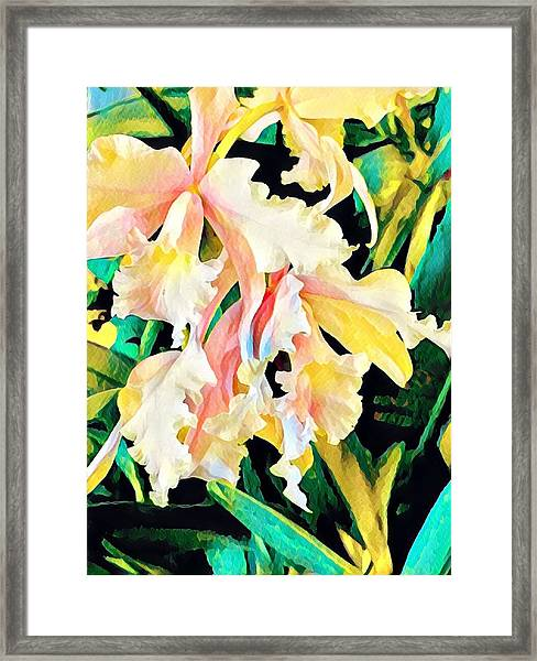 Two Orchids Pink Turquoise Framed Print