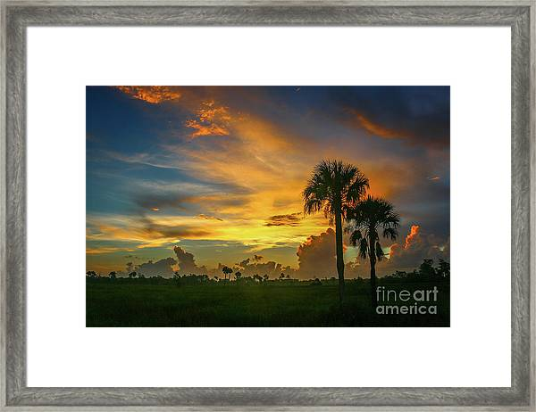 Framed Print featuring the photograph Two Palm Silhouette Sunrise by Tom Claud