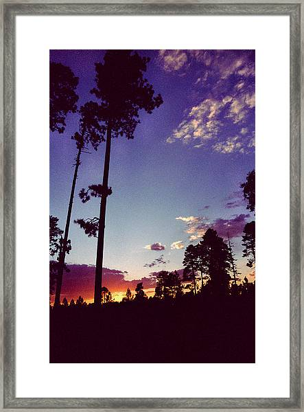 Two Pines Sunset Framed Print