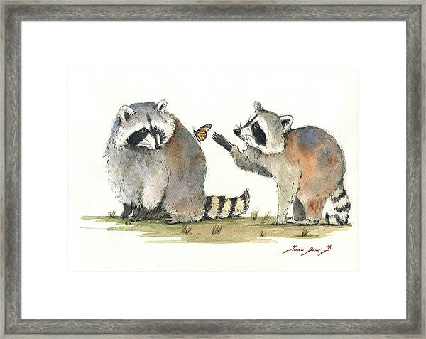 Two Raccoons Framed Print