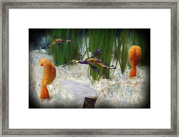 Two Sea Horses Framed Print