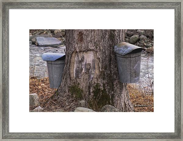 Two Syrup Buckets Framed Print