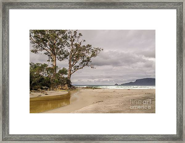 Two Tree Point Framed Print