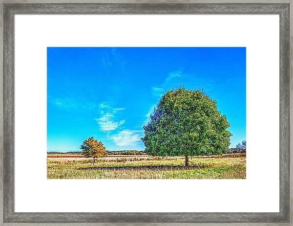 Two Trees On The Illinois Prairie Framed Print