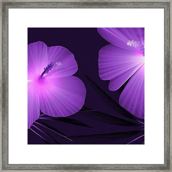 Ultraviolet Hibiscus Tropical Nature Print  Framed Print
