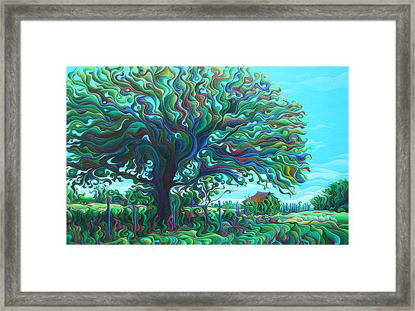 Umbroaken Stillness Framed Print