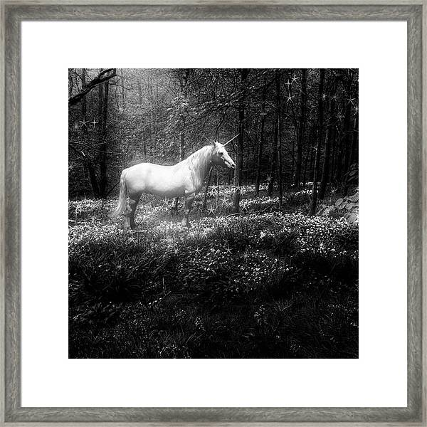 Under A Moonlit Sky  #fantasy #unicorn Framed Print