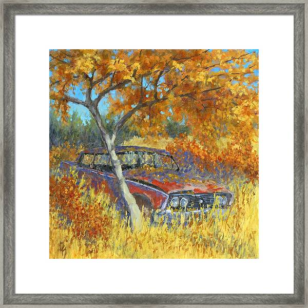 Under The Chinese Elm Tree Framed Print