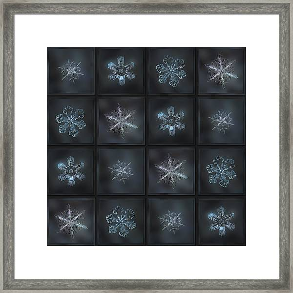Under The Grey Sky II Framed Print