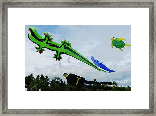 Under The Sea Kites Framed Print