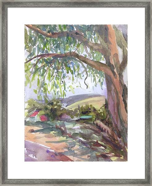 Under The Shade  Framed Print by Diane Renchler