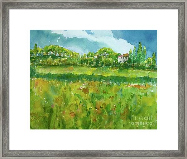 Under The Tuscan Sun Framed Print