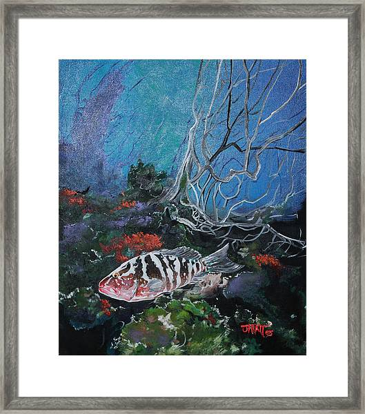 Under Water Adventure Framed Print