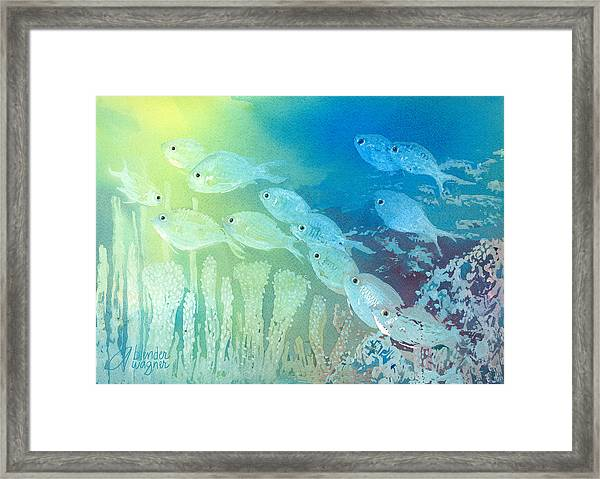Underwater School Framed Print