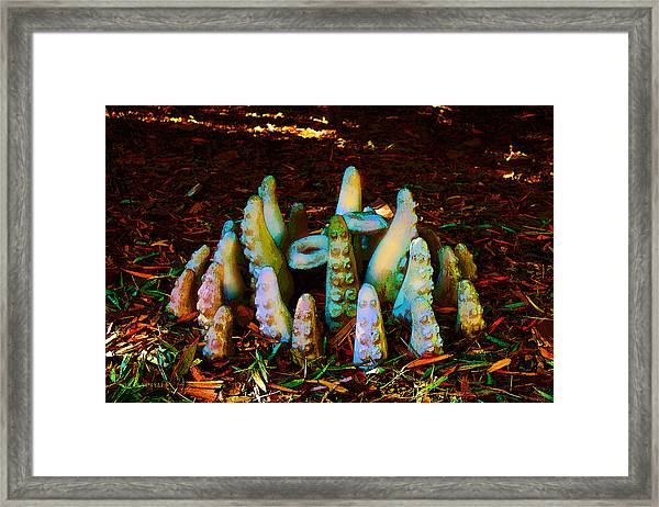 Unexpected Tenacles Framed Print