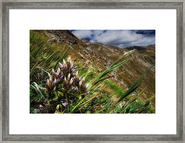 Untitled 94 Framed Print