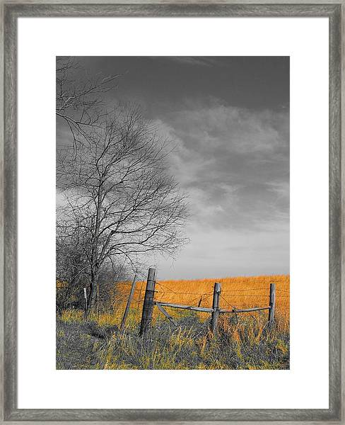 Framed Print featuring the photograph Untitled by Dylan Punke