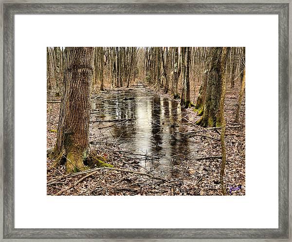 Untitled1 Framed Print